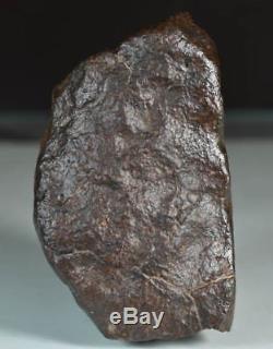 Belle Météorite Chondrite NWA, Complète avec Croûte de Fusion, 610 g