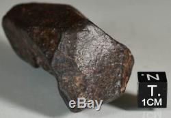 Belle Météorite Chondrite nwa Complète avec Croûte de Fusion, 106,4 g, Sahara