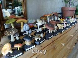 Collection complète de trente champignons en résine synthétique Circa 1960-70