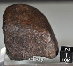 Météorite Chondrite Orientée, Complète, Croûte de Fusion, Veines de Choc, 139g