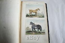 Oeuvres complètes de BUFFON 10 livres avec les suppléments 1846 Abel Ledoux